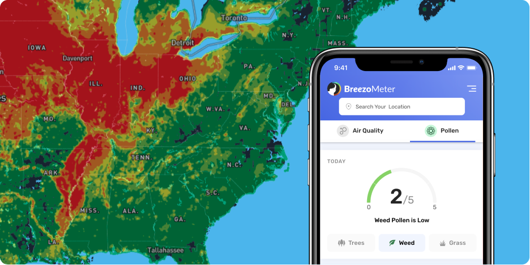 The Science Behind BreezoMeter's Advanced Pollen Forecasting Technology