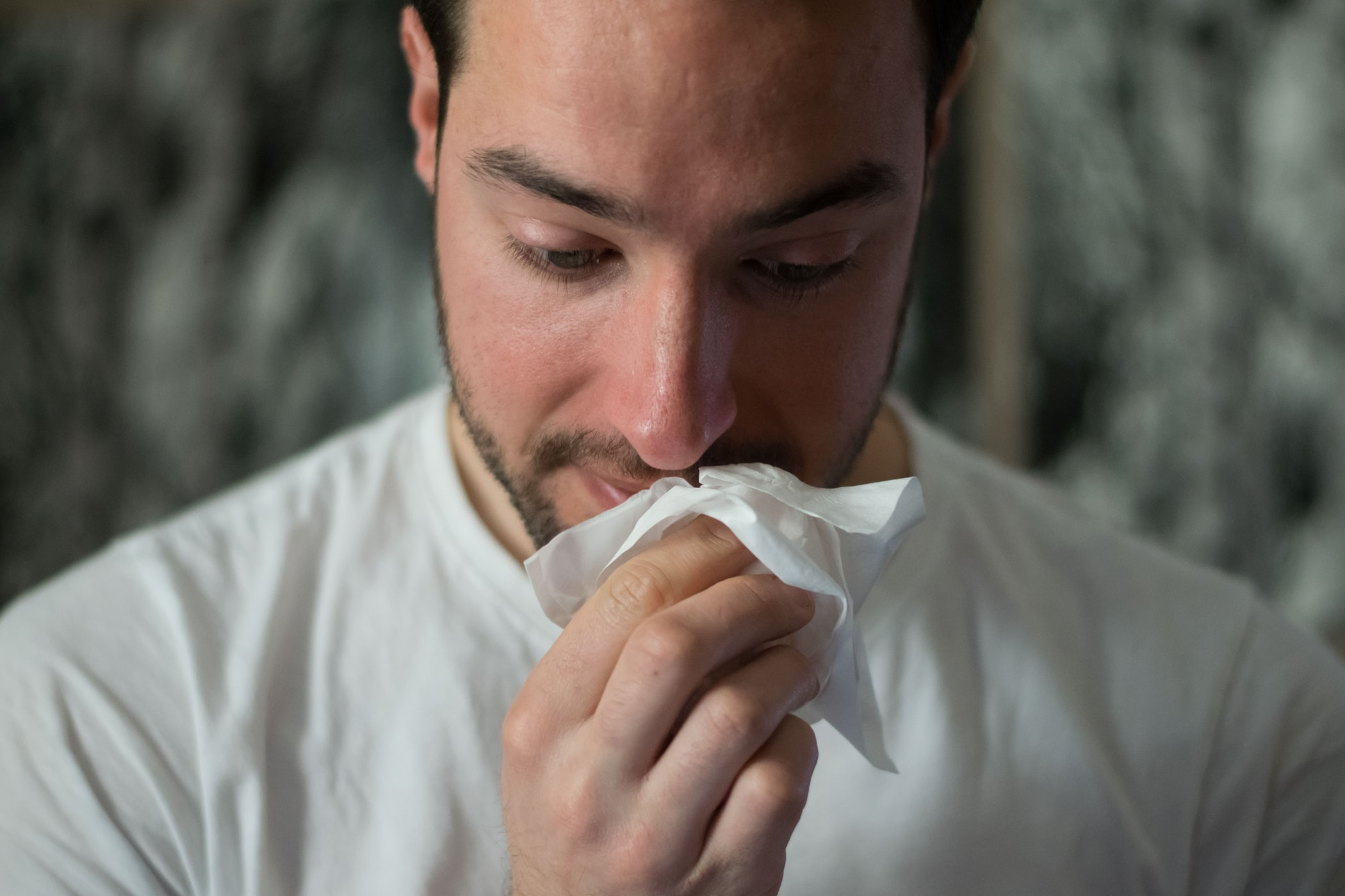 What's Making Us Sneeze? Keeping an Eye on Changing Pollen Levels