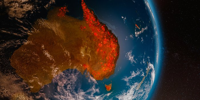 How Do Wildfires Start & Can We Predict Them?