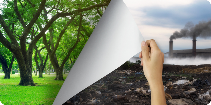 BreezoMeter Closes Series C with $30M for Health-Focused Environmental Intelligence
