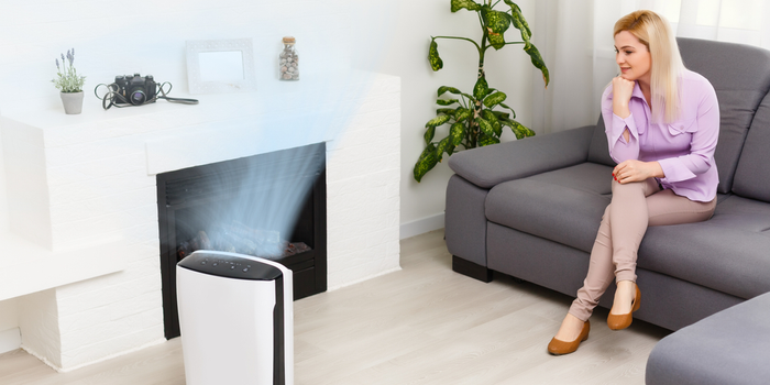 The Science Behind Air Purification & Filtration + Smart Home Favorites (Delos Interview. Pt 2)